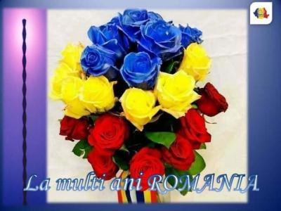 FB_IMG_1543645043578