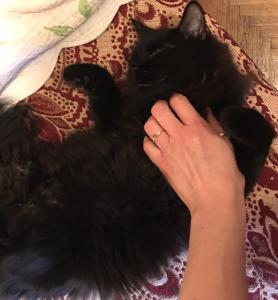 Mitzi-persana neagra, fara un ochi